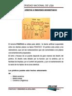 Protesis fija PRUEBA DE LA ESTRUCTURA METÁLICA