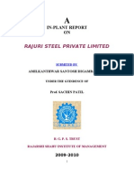project Report Rajuri Steel Jalna