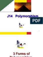 J14 Polymorphism