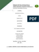 Informe Ecología Redes tróficas en Ecosistemas Acuáticos.docx