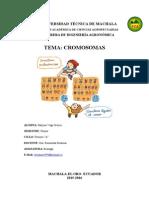 Cromosoma-GENERALIDADES