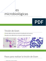 Tinciones microbiológicas