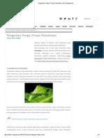 Pengertian, Fungsi, Proses Fotosintesis _ Ilmu Pengetahuan.pdf