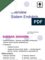 82568989 Endokrin 101101a Dr Erlina Overview Endokrin 2011