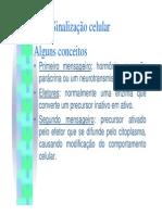 11º Aula de Biologia Celular - Sinalização, Apoptose e Diferenciação Celular.pdf