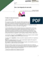 1Análisis Investigación Mercado.doc