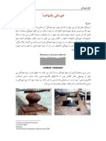 Uniform Corrosion-farsi-8574