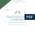 Caracteristicas de Las Miypimes