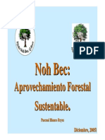 Aprovechamiento Forestal Sustentable