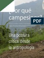 Alvaro Acevedo Merlano - ¿Por qué Campesinos?