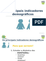 gvis8_indicadores_demograficos.pptx