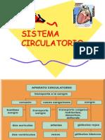 circulatoorio 5