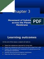 Chapter 3-plasma membrane