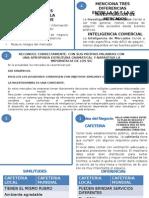 RUBRICA INTELIGENCIA COMERCIAL.pptx