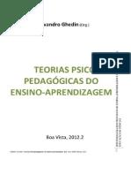 GHEDIN, Evandro. Teorias Psicopedagógicasdo Ensino-Aprendizagem