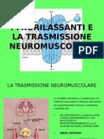 Miorilassanti e La Trasmissione Neuromuscolare