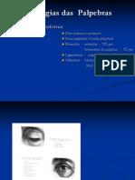 Aula 2  - patologias das palpebras.pdf
