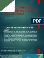 Desarrollo Insti Ad Hoc Para Municipios