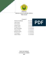PROPOSAL pengamen.docx