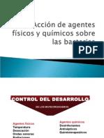 Accion de Agentes Fisicos y Quimicos ALIM