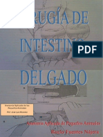 Cirugia Intestino Delgado