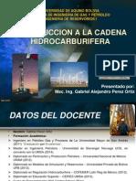INTRODUCCION A LA CADENA HIDROCARBURIFERA.pdf