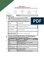 Formato SNIP de Perfil