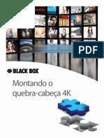 Pt Wpe0035 the 4k Puzzle