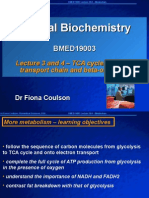 Biomedical Education - Metabolism - TCA cycle