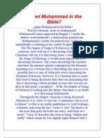 Prophet Muhammad in the Bible?