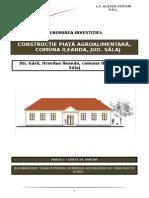 CAIETE DE SARCINI- PT+DDE