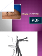 Dengue Fever Im Clerkship