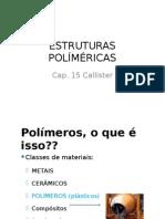ESTRUTURAS POLÍMÉRICAS.pptx