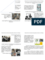 Manual de Los Comités de SST