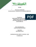 Informe Final Componente Practico