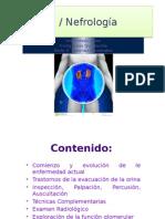 Urologia y Nefrologia. Equipo Isis Irving Karla