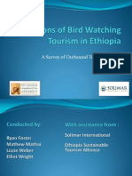 Ethiopia Birdwatching Survey