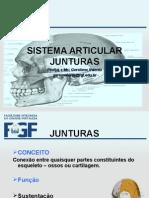 Aula 3 -Sistema Articular - Junturas