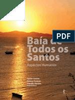 Baia2011.pdf