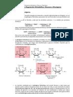 Principios de Regulación Metabólica. Glucosa y Glucógeno