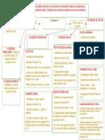 semana 1 mapa conceptual sociedades.docx