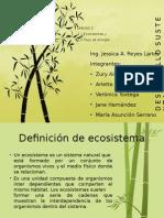 UNIDAD 2- Ecosistemas