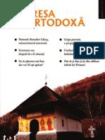 familia ortodoxa6_selectii