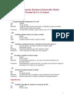Pauta de EV Kinesica Desarrollo Motor2005[1]