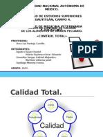 Calidad-T..pptx