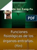 04, -Teoría de los Zang-Fu (Yin).ppt