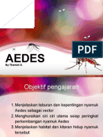 Morfologi dan pengenalan Nyamuk Aedes