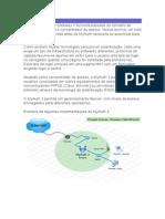 Manual MyAuth® Gateway 3