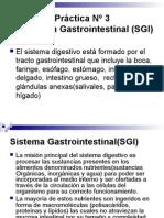 Sistema Gastrointestinal(SGI)