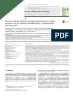 Korean Sculletaria Baicalensis Georgi Methanol Extracts Inhibits Metastatis via the Forkhead Box M1 Activity in Hepatocellular Carcinoma Cells